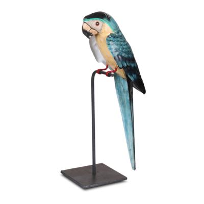 Papagaai beo - Livik meubelen